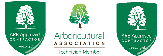 Bristol Tree Services -  Arboricultural Association Approved Contractors